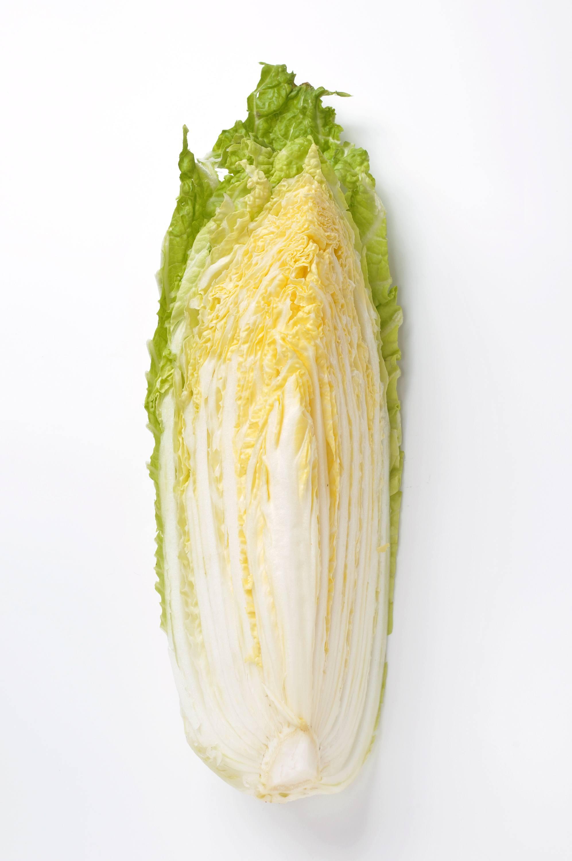 切った白菜