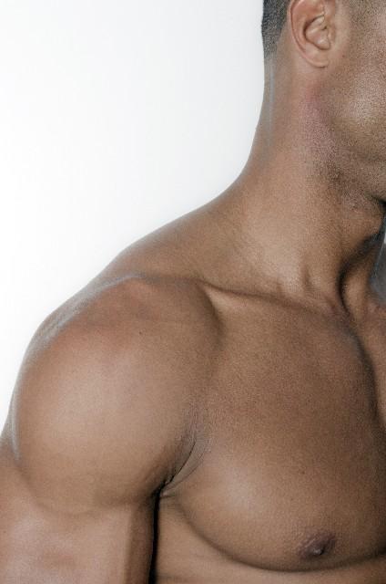 ボディービル 胸板